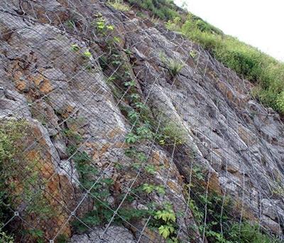 边坡绿化防护网